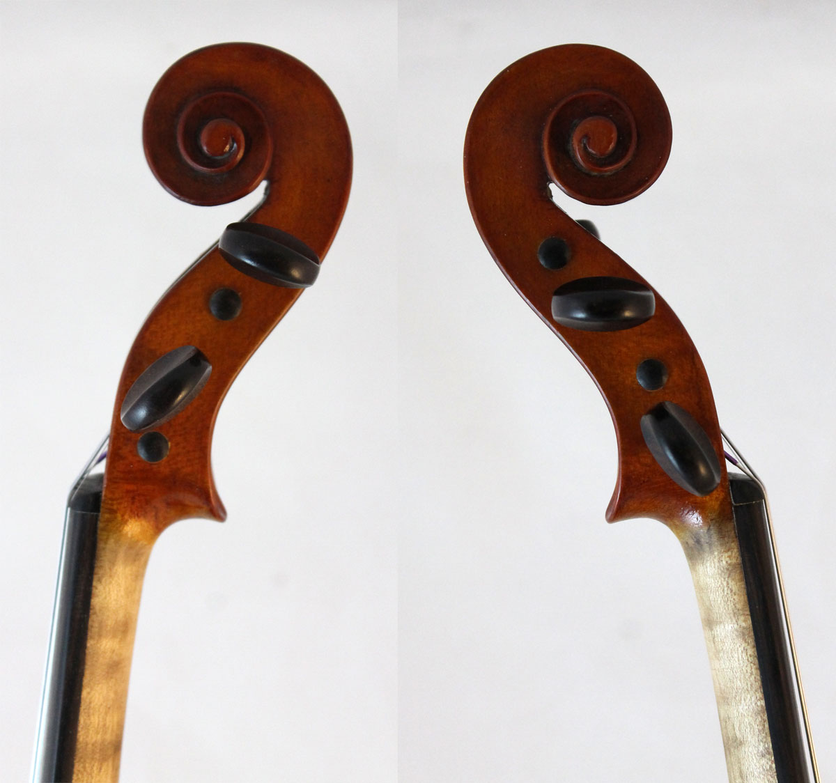 F X Drozen violin scroll sides