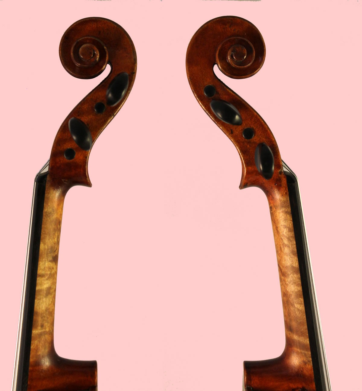 stefani violins scroll