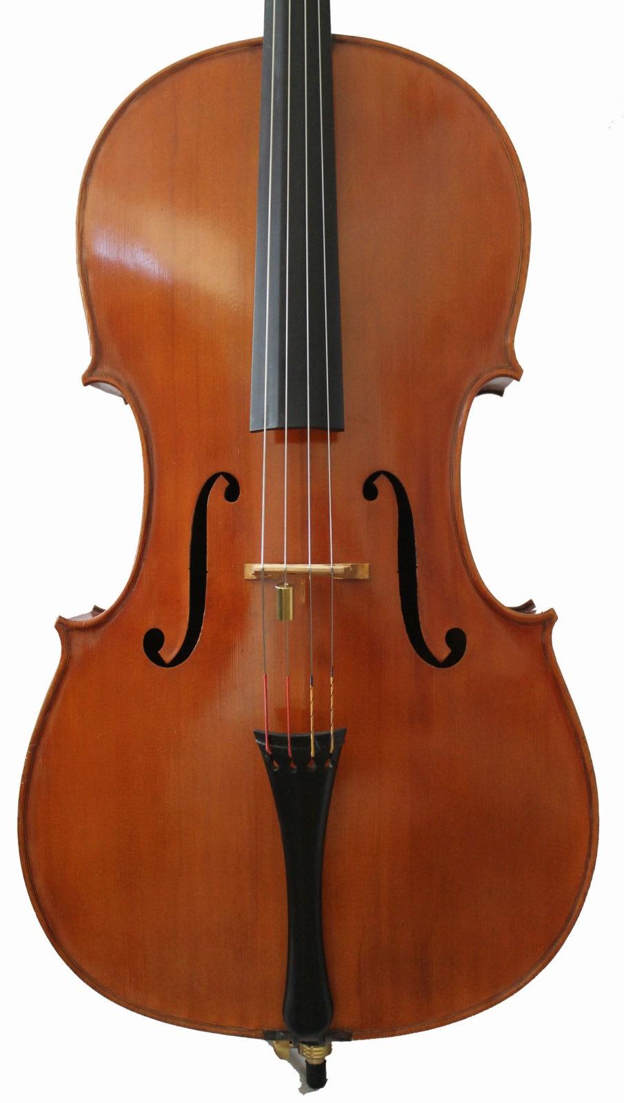 Enzon Bertelli cello
