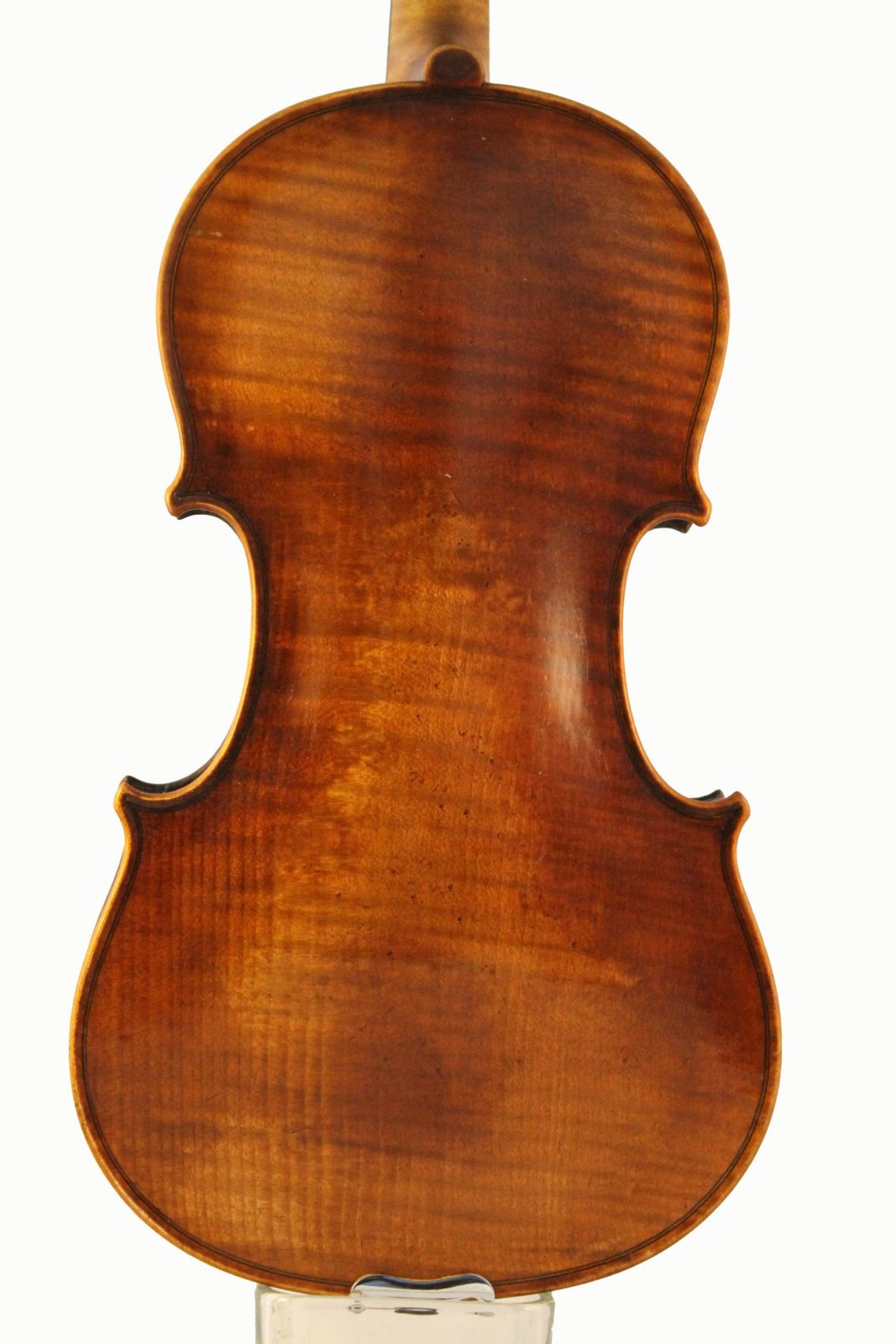 Roth Lederer violin back