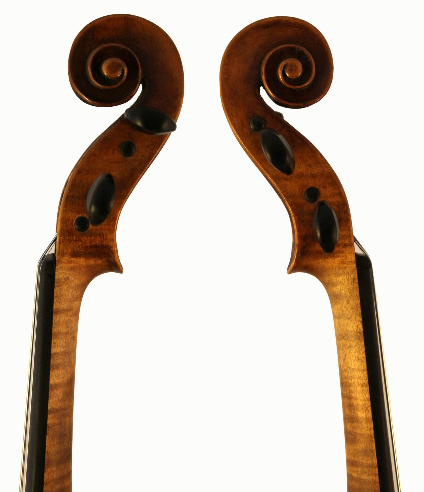 Roth Lederer violin scroll sides