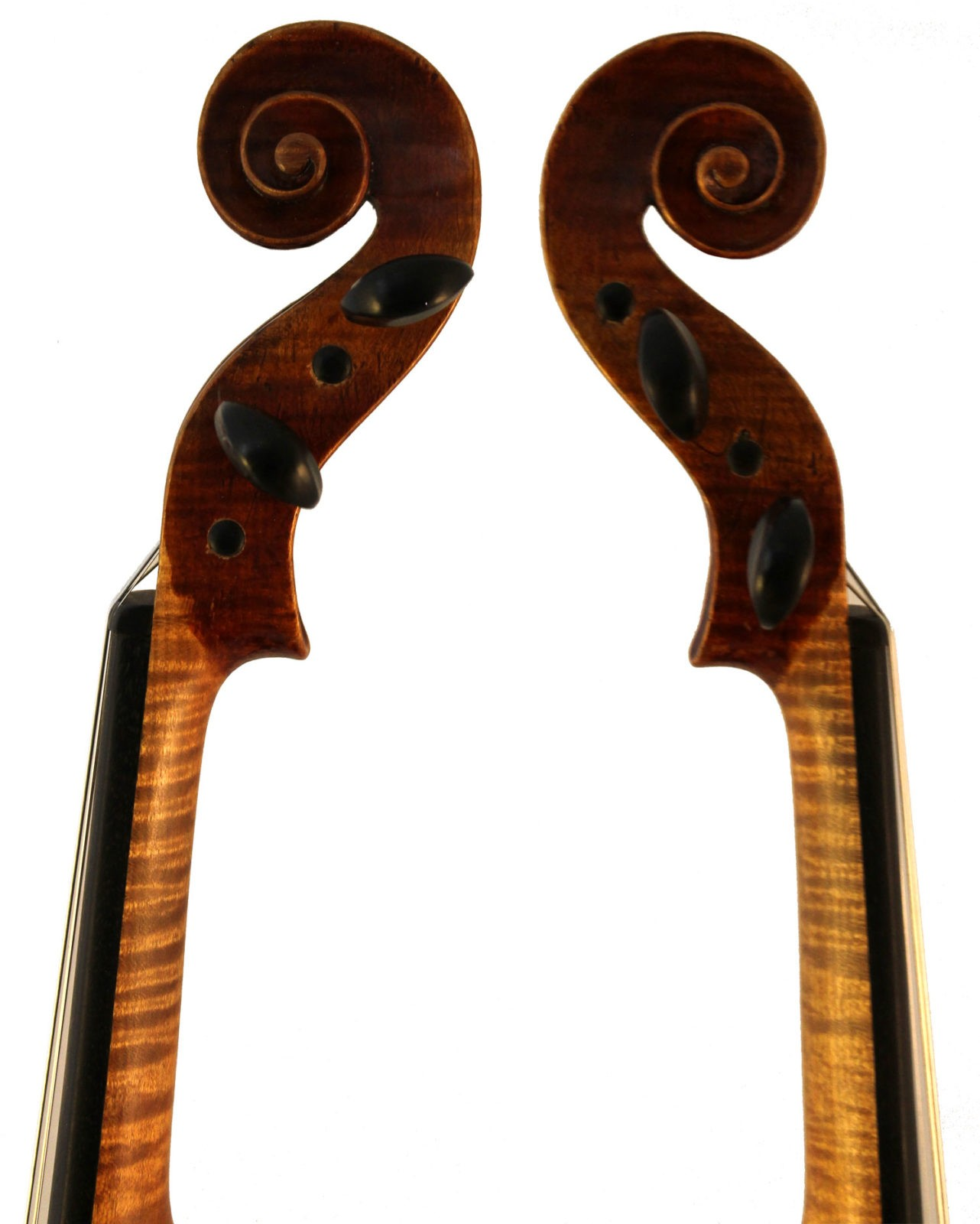 Albin O Schmidt violin scroll sides